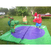 Sumo Wrestling Teens