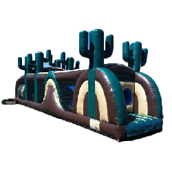 Cactus Obstacle Course