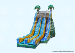Giant Slide 24' DRY