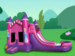 4 IN 1 PRINCESS Wet OR Dry BOUNCE COMBO All Day Rental