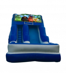 Angry Birds 16'Wet OR Dry Slide