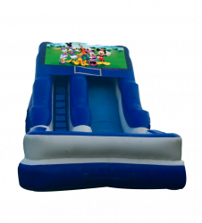 Mickey & Gang 16'Wet OR Dry Slides