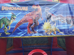 Dinosaurs Combo 5 in 1 Extra Large