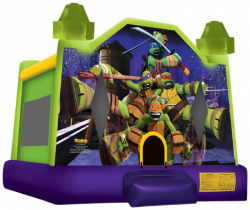 Ninja Turtles small Inflatable