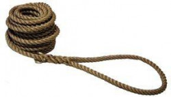 Tug 'o War Rope 100'