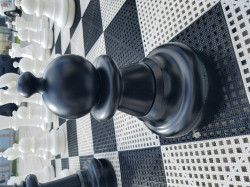 20181108 145539 862234425 Giant Chess