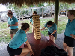 Giant Jenga *(4L 4W 4H) Table NOT Included