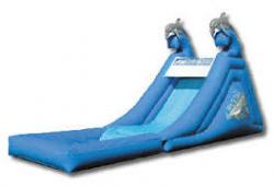 Dolphin Splash Down Slide