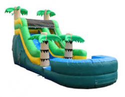Palm Tree Water Slide
