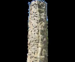 Rock Wall 3-Climber