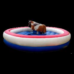 Round Bull Ring Option