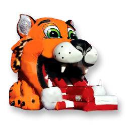 25' Tiger Slide