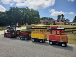 Electric trackless Train