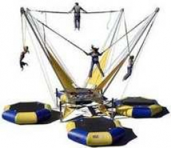 4 Person Euro Bungee