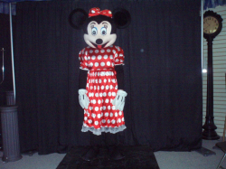 Ms Mouse Costume