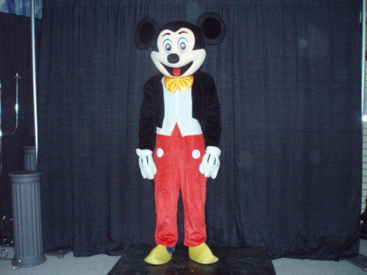 Mr Mouse Costume
