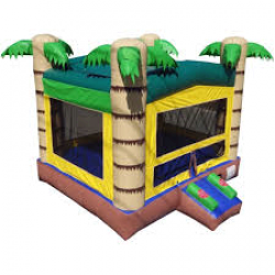 NEW Tropical Bounce House