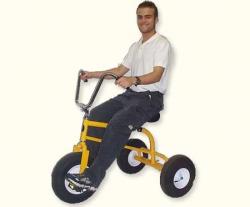 Adult Trikes (2)