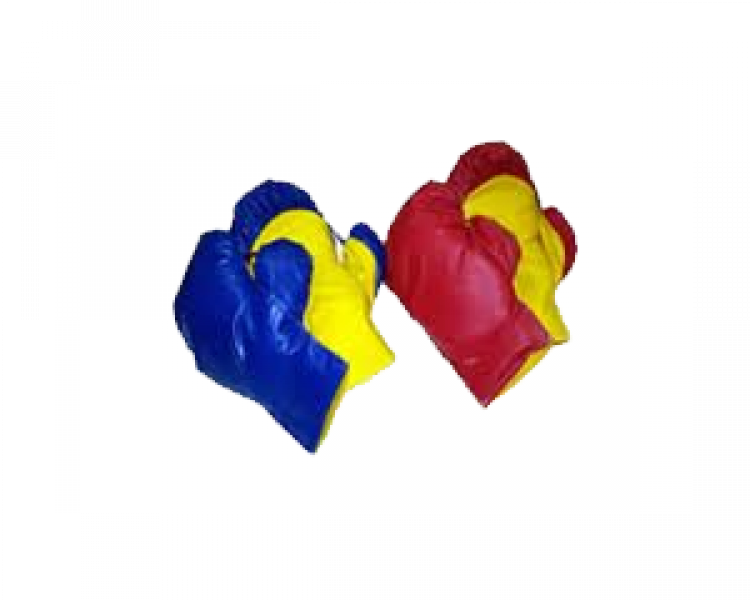 BOXING GLOVES (2 PAIR)