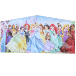 Princess Banner