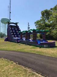 30ft Plum Crazy Slide