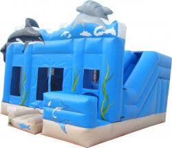 4 in 1 Ocean with Slide
