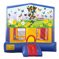 Butterfly Extreme Bouncer with Slide