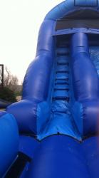 18' Dolphin Dive Slide
