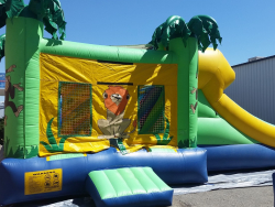 Safari Bouncer with Water Slide and Pool