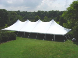40 x 100 Canopy
