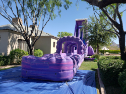 40ft Purple Monster Water Slide