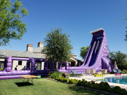 40ft Purple Monster Water Slide