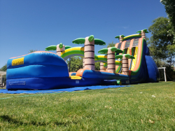 22ft Tropical Rush Water Slide