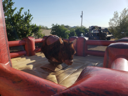 Mechanical Bull incl 1 staff (Large Ring)