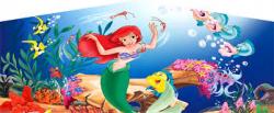Little Mermaid Combo