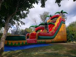 20' Fiesta Breeze Water Slide