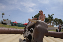 Mechanical Bull incl 1 staff (Round Ring)