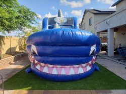 18ft Shark Tank Water Slide