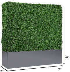 Hedge Wall - Short 4ft Tall x 4ft Wide