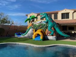 Dinosaur World Bouncer Combo
