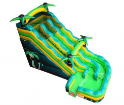 18 Foot Dual Lane Tropical Curve Slide