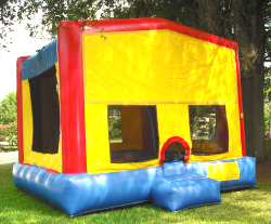 BOUNCE HOUSE WITH A HOOP
