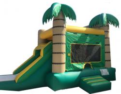 Jungle Combo - Small Slide