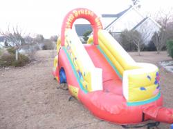 Junior Dragon Slide (Dry Slide Only)