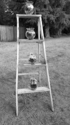 4' white display ladder