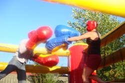 Bouncing Boxing