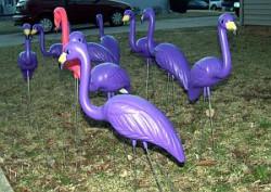 Flamingo Yard Display - Purple