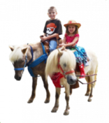 Pony Rides 1614578100 Z16 Slide & More Deal