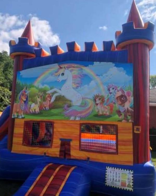 Unicorn/Rainbow Party Deluxe Bounce House / Slide Combo
