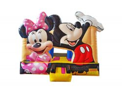 Mickey & Minnie Playland